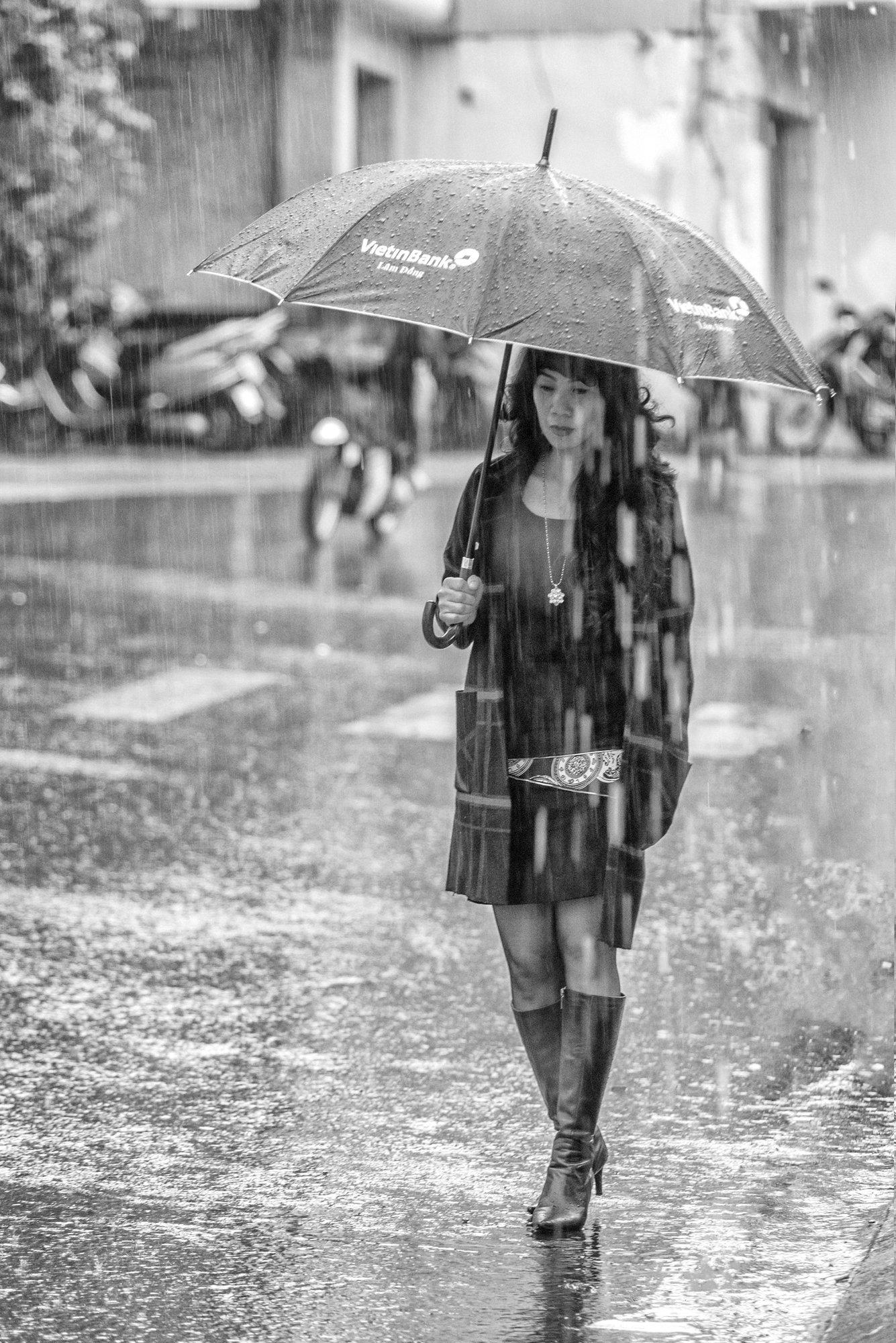 the rain pm dalat vietnam , Hoang Viet
