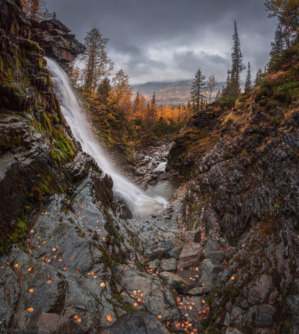 пейзаж,россия,хибины,вода,осень,лес,горы,цвет,свет,панорама, Истомин Виталий