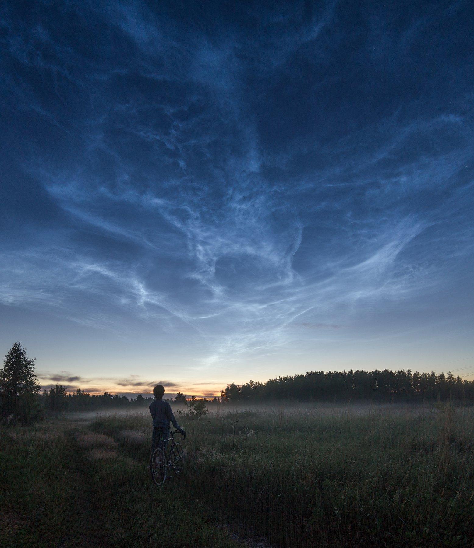 ночь велосипед туман лес серебристые облака луна moon night travel cycling, Евгений Озеров