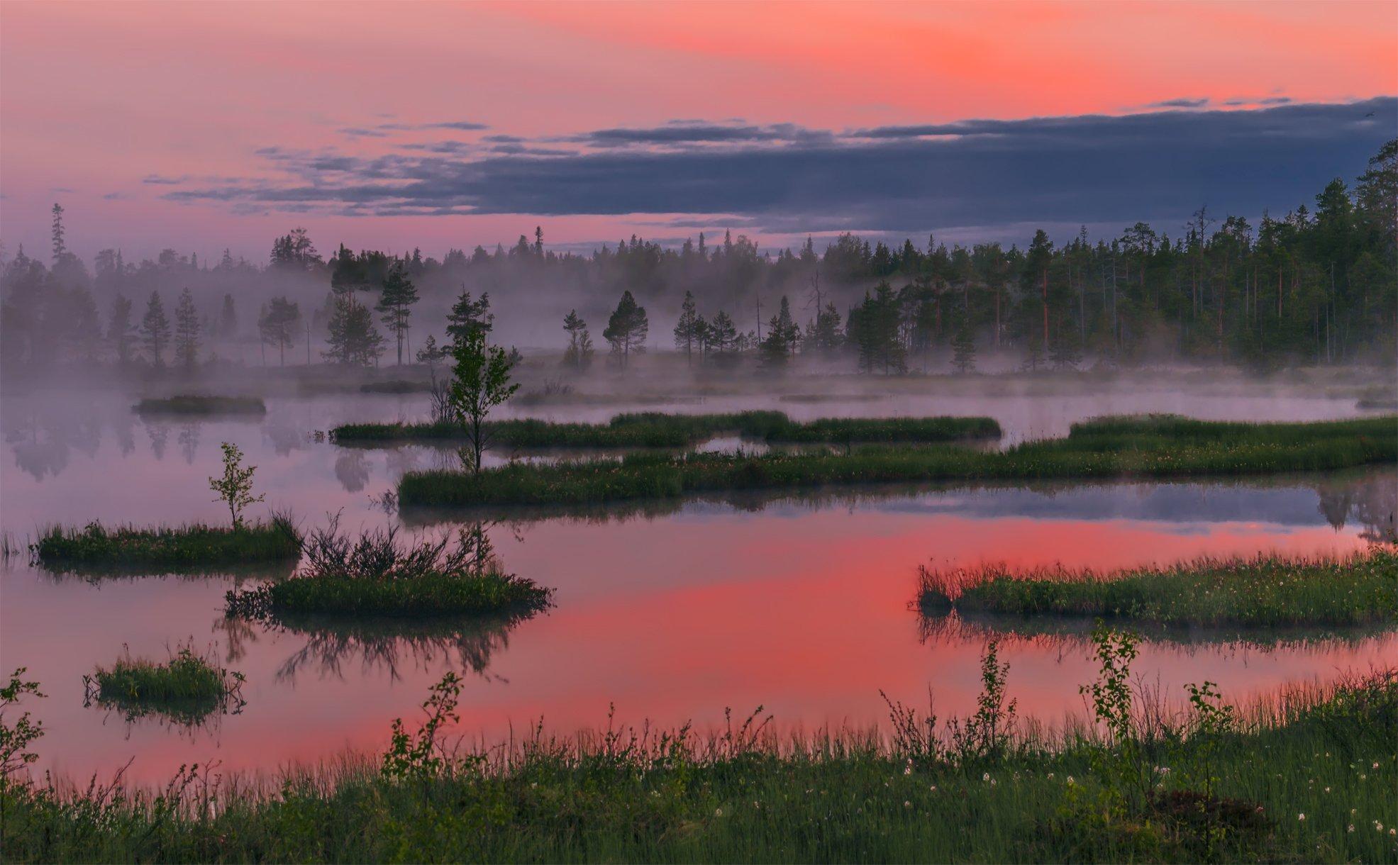 природа, пейзаж, карелия, панорама, утро, восход, рассвет, болото, туман, остров,, Альберт Беляев