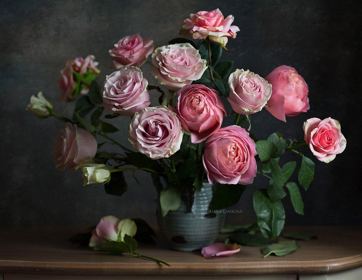 натюрморт, фотонатюрморт, цветы, розы, букет, свет, настроение, алина ланкина, Алина Ланкина