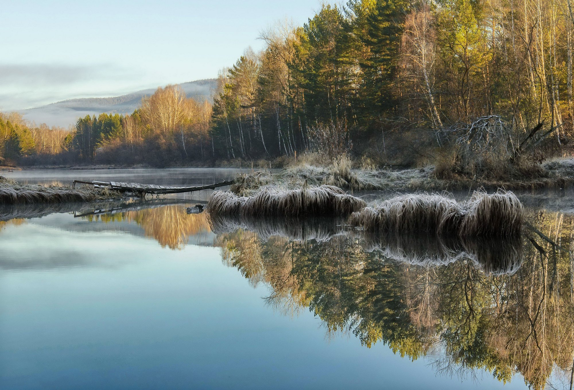 туман. осень. озерко, Марина Фомина.