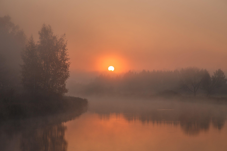 рассвет, утро, туман, осень, октябрь, криница, минск, беларусь, Andrey Kozlov