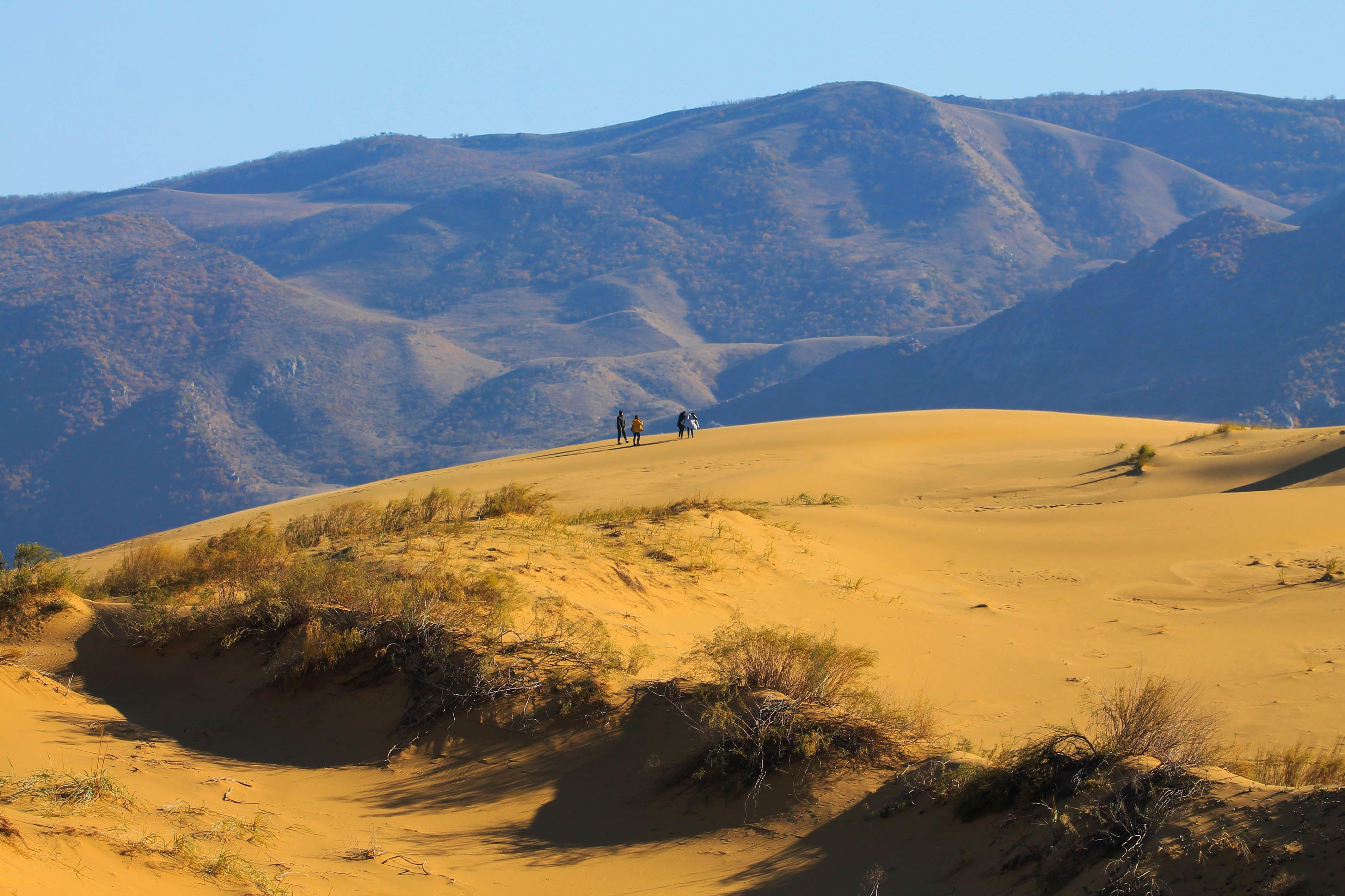 песчаная гора,песок,пейзаж,дагестан.., Марат Магов