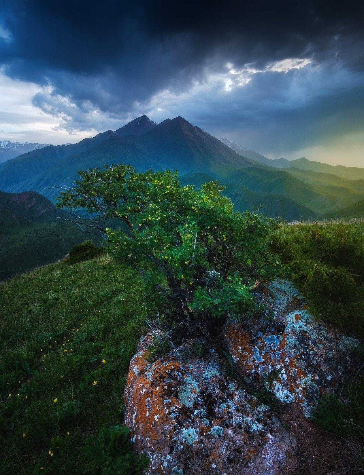 киргизия, кыргызстан, средняя азия, горы, каньон, скалы, пейзаж, лето, ущелье, вечер, закат, Оборотов Алексей