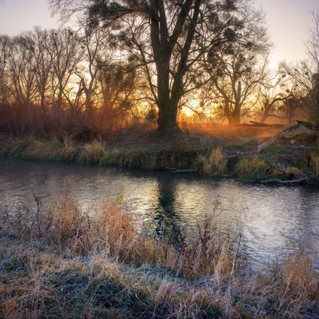 река, утро, пейзаж, туман, мороз, польша, Быстшица, river, morning, landscape, fog, frost, poland, Bystrzyca, Виктор Тулбанов