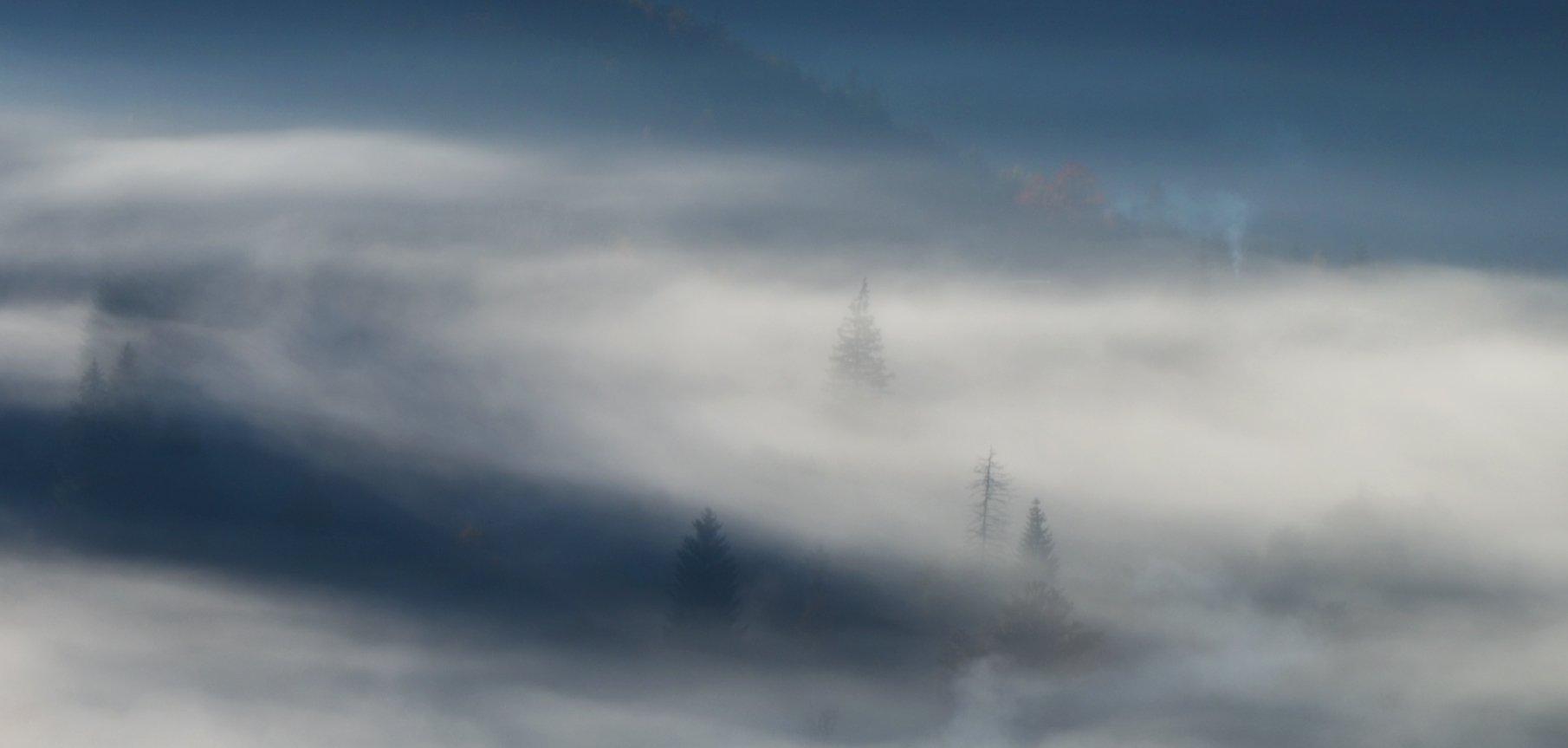 горы, утро, туман, дымок, карпаты, Вьюшкин Игорь