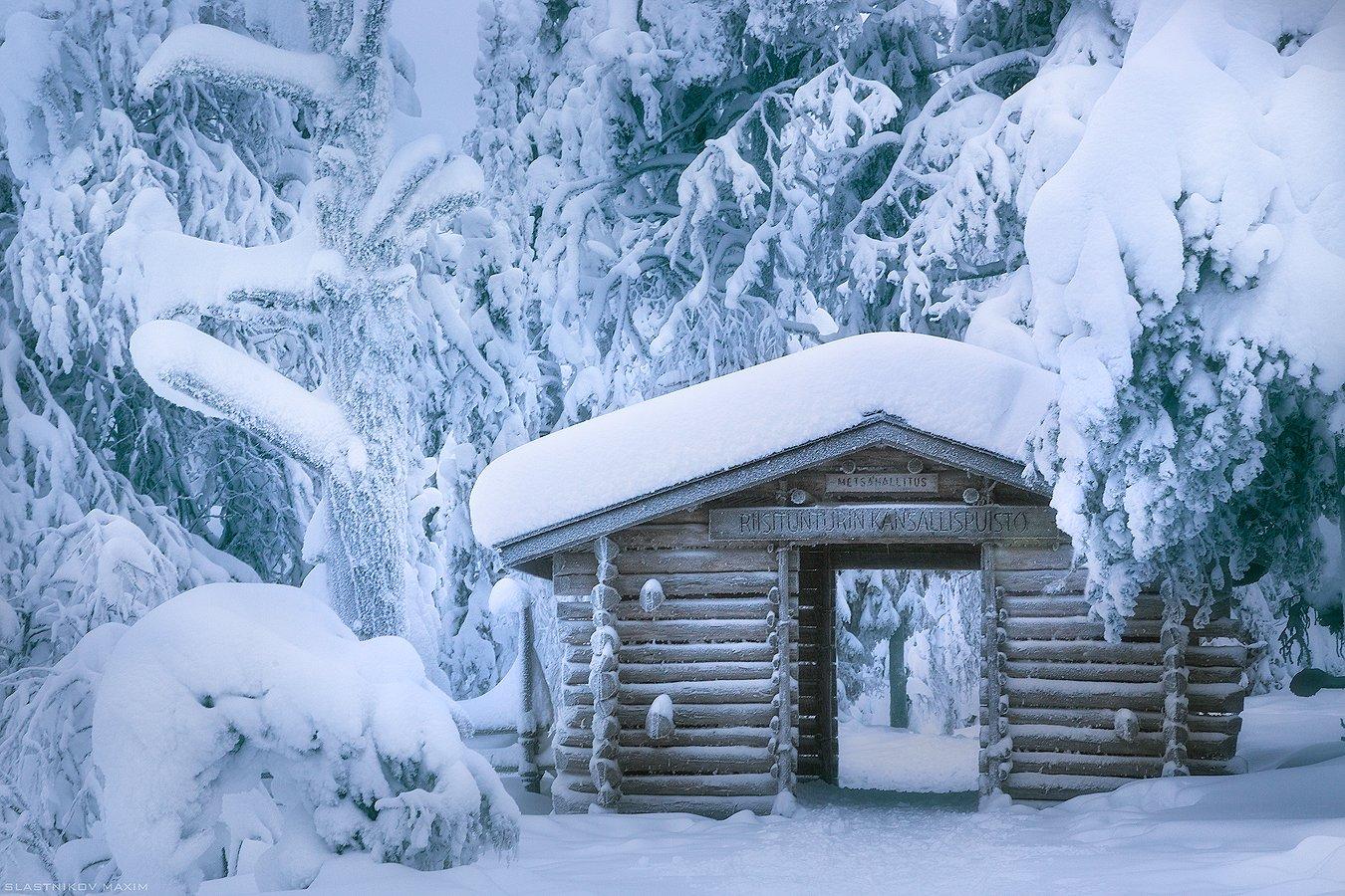 финляндия, снег, дерево, дом, тропинка, сугробы, мороз, холод, лес, путешествие, парк, travel, explore, snow, frost, trees, forest, travel, trekking, day, winter, Максим Сластников