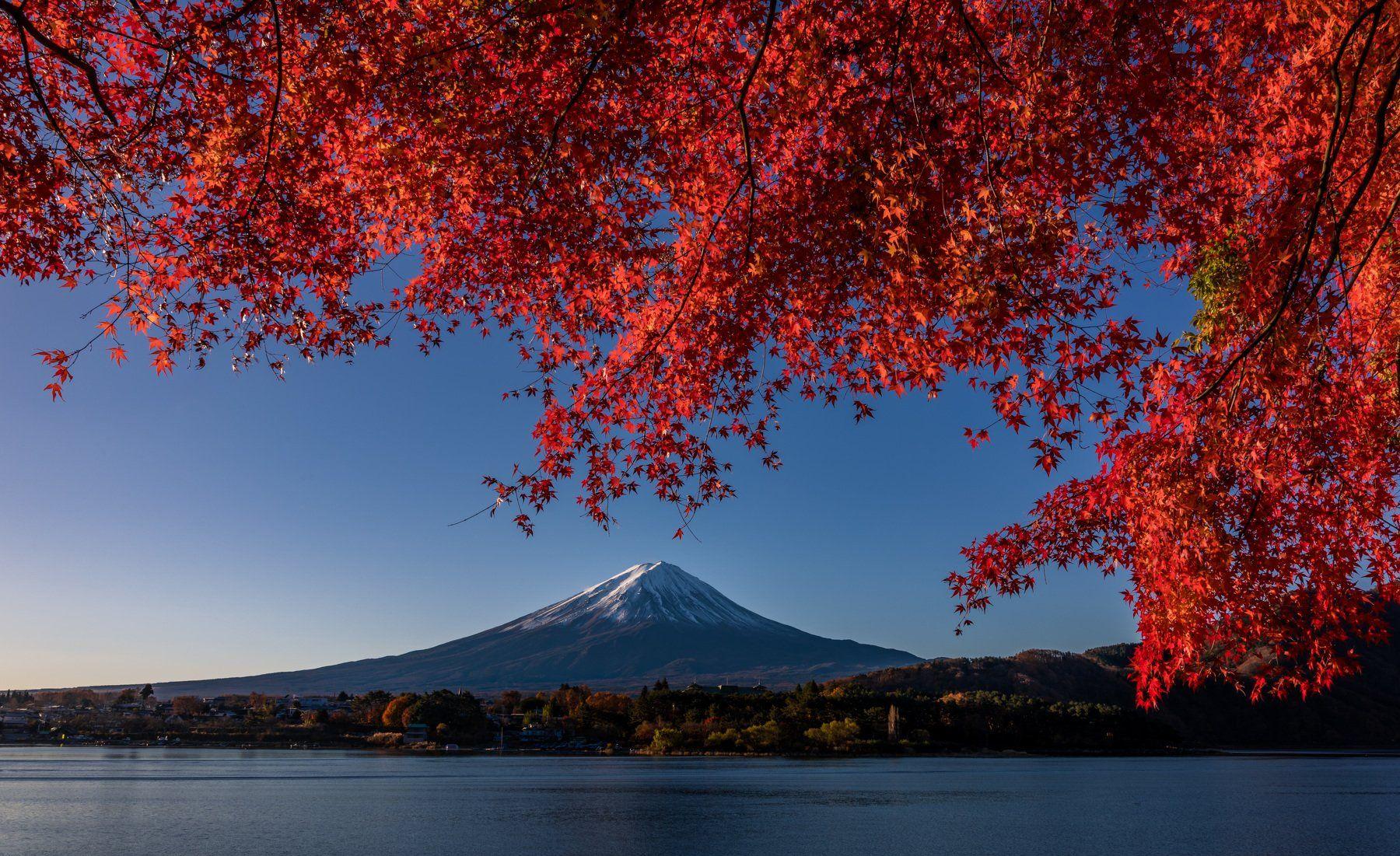 fuji landscape japan autumn nature mountain lake travel, Hasan Jakaria