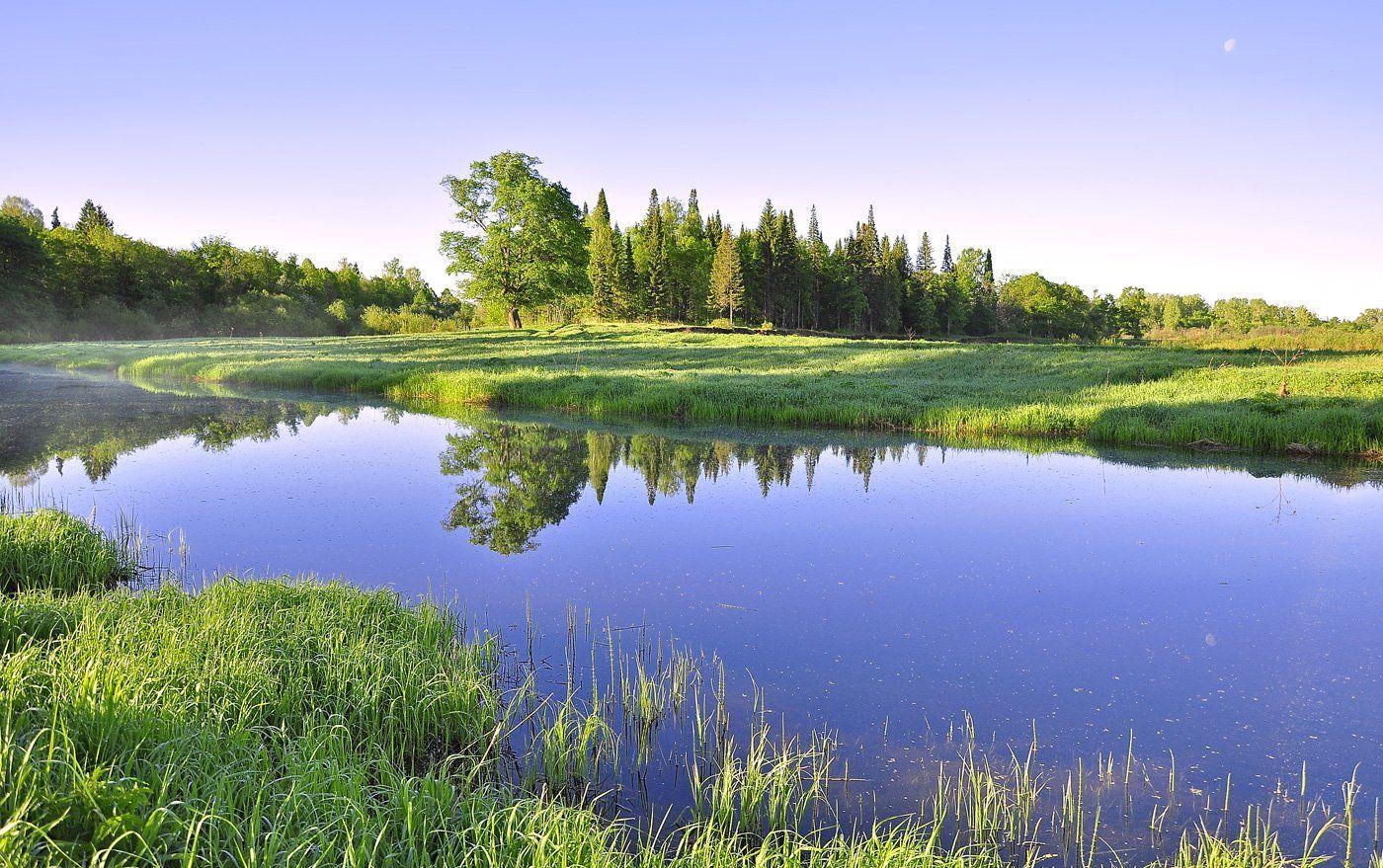 удмуртия,кез,пейзаж,река чепца,май, АНДРЕЙ LOZHKIN