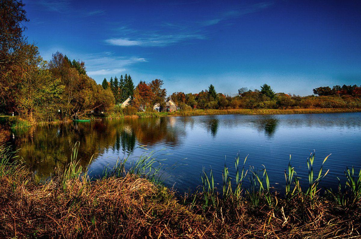 отражения, вода, природа, Rimantas Petrikas