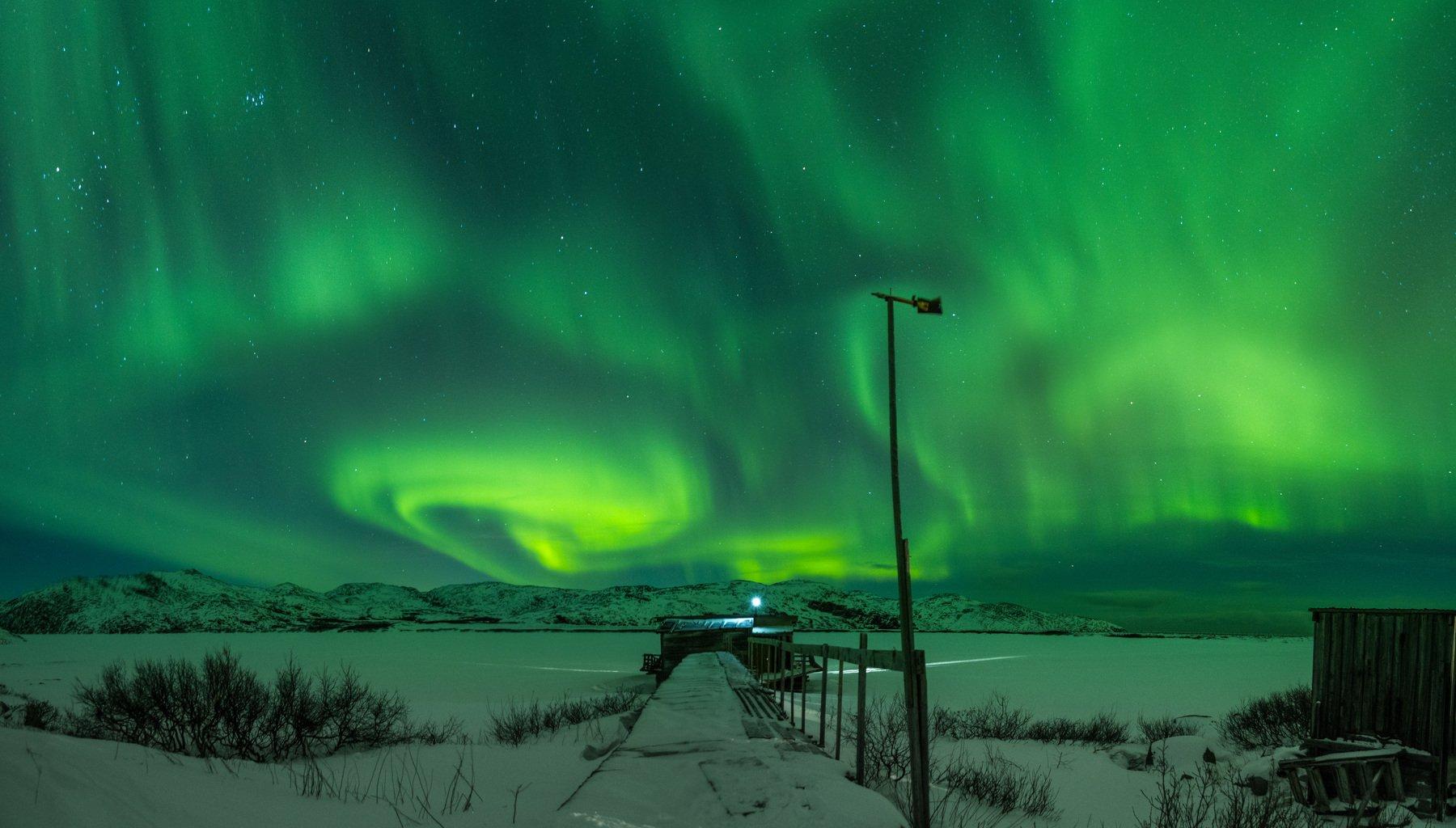 ночь, север, северное, сияние, териберка, зима, кольский, снег, Евгений Озеров