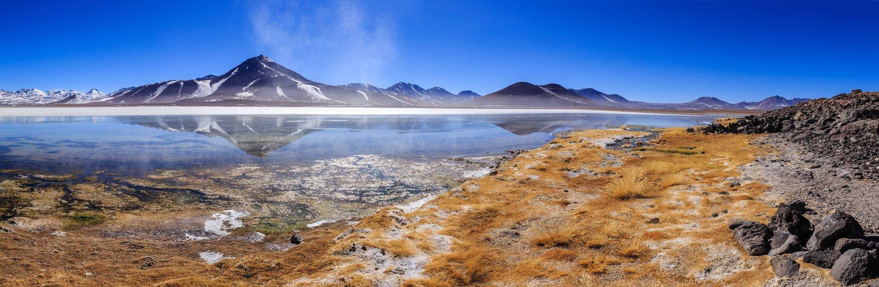 Bolivia, Altiplano, Laguna Blanca, Vitalis Vasylius