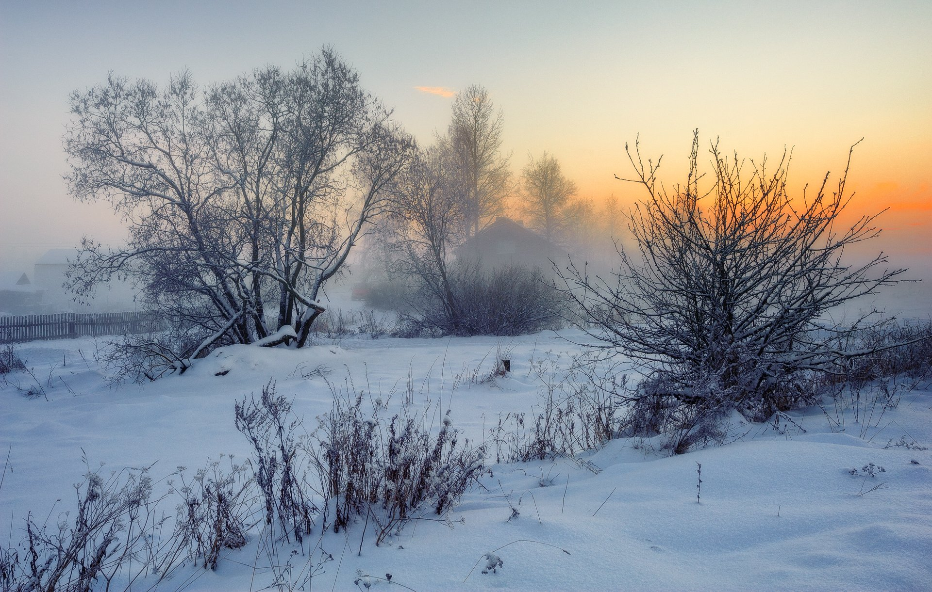 зима,вечер,туман,сумерки,снег,пейзаж, Евгений Плетнев