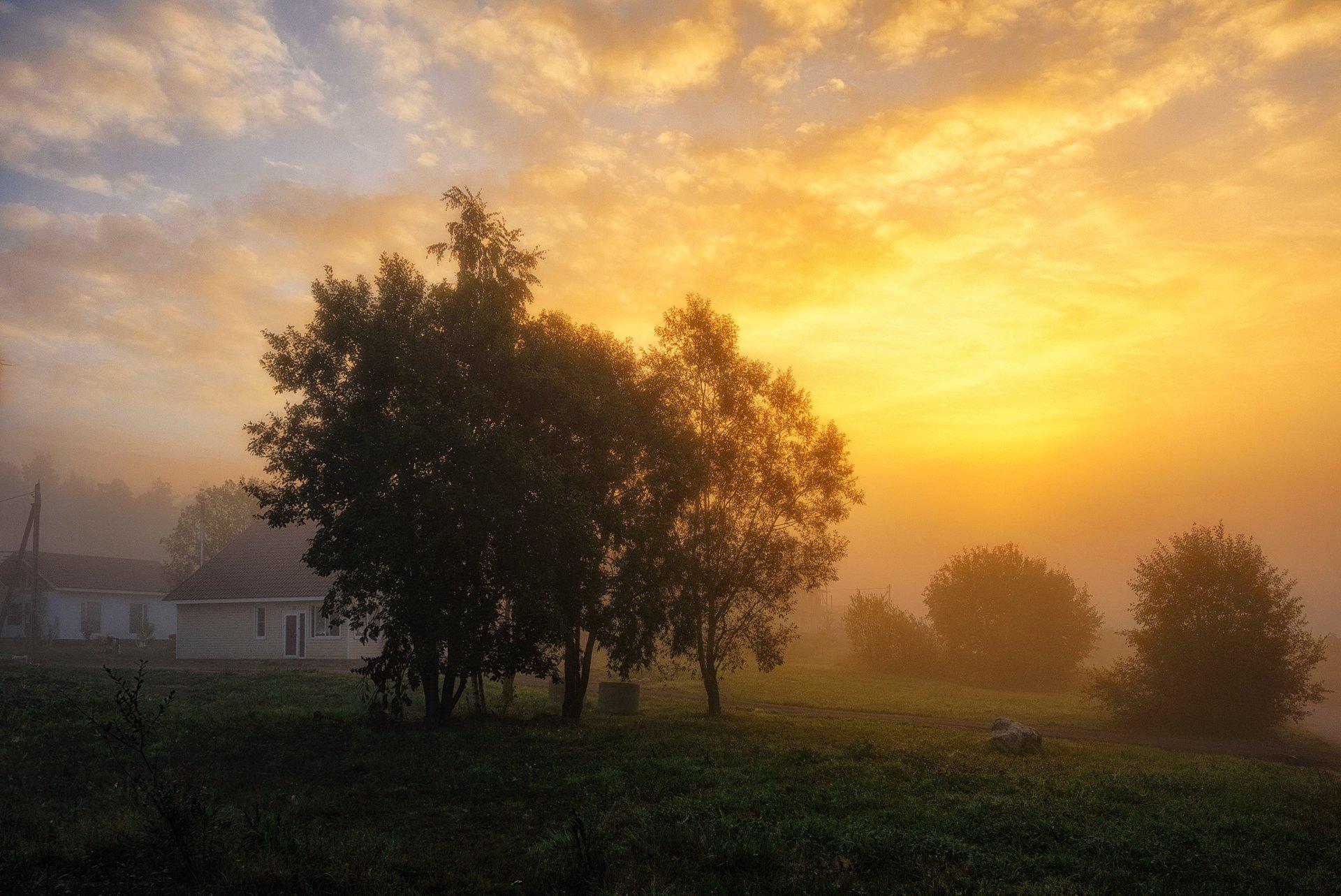 осень,сентябрь,тепло,утро,рассвет,свет,небо,пейзаж, Евгений Плетнев