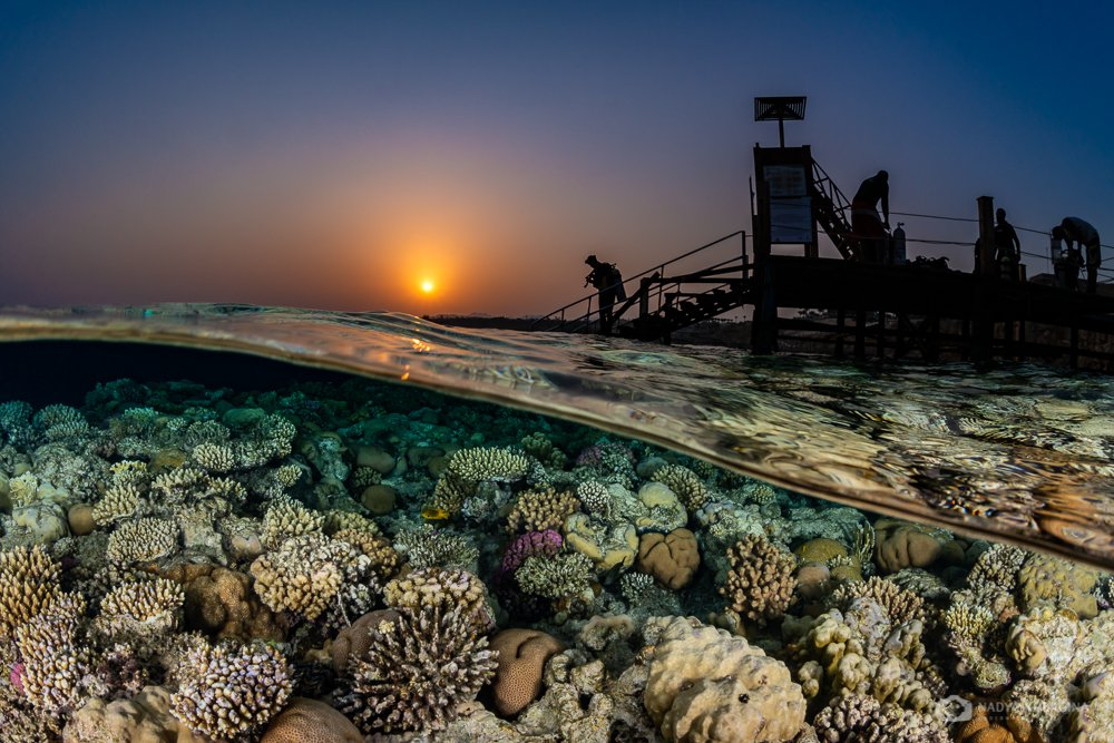 underwater, photography, sunset, split leve, above and below, over-under, egypt, sunset, nadeika