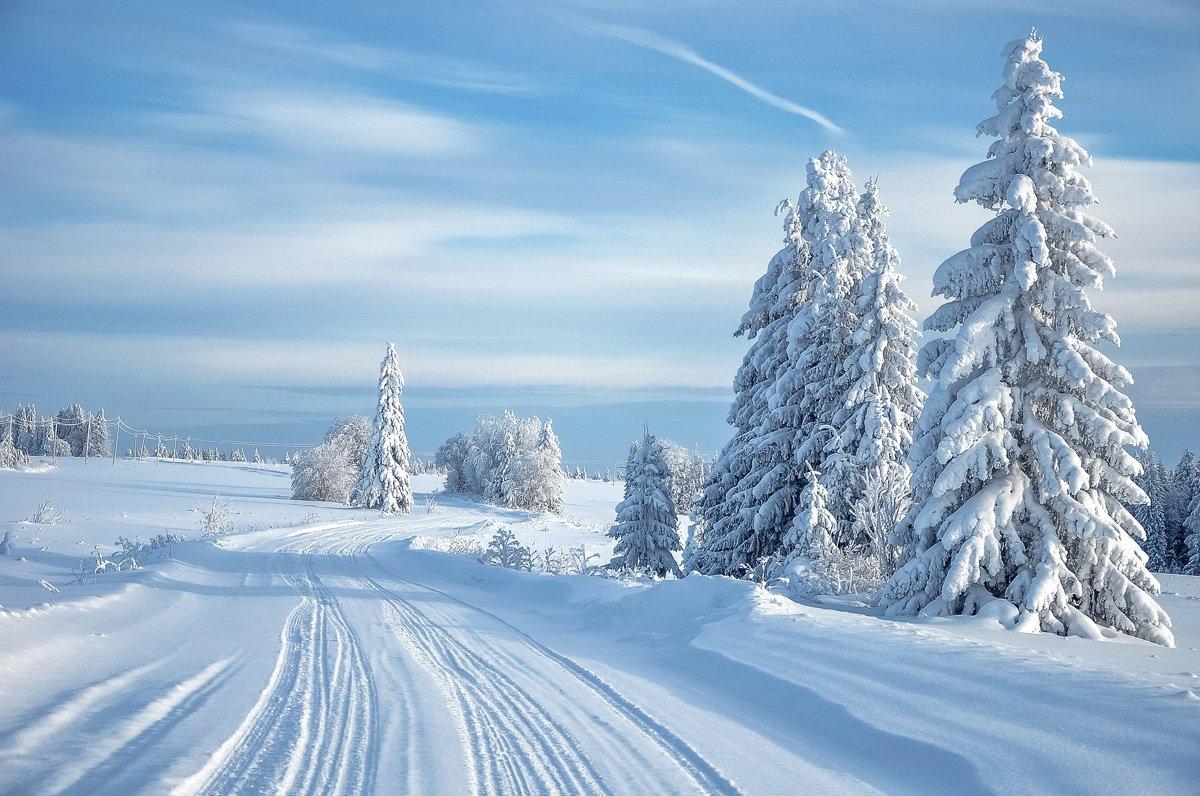 удмуртия, зима, иней,кезский район, АНДРЕЙ LOZHKIN