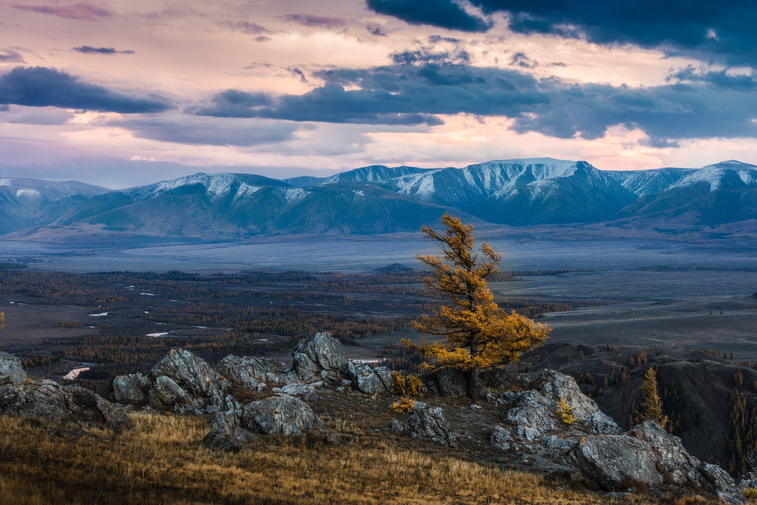 осень, алтай, чуя, степь, горы, Marina Malikova
