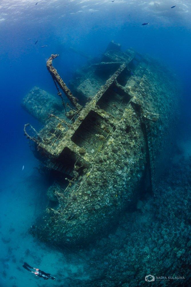 underwater, photography, wreck, egypt, magic filter, ship, model, nadeika