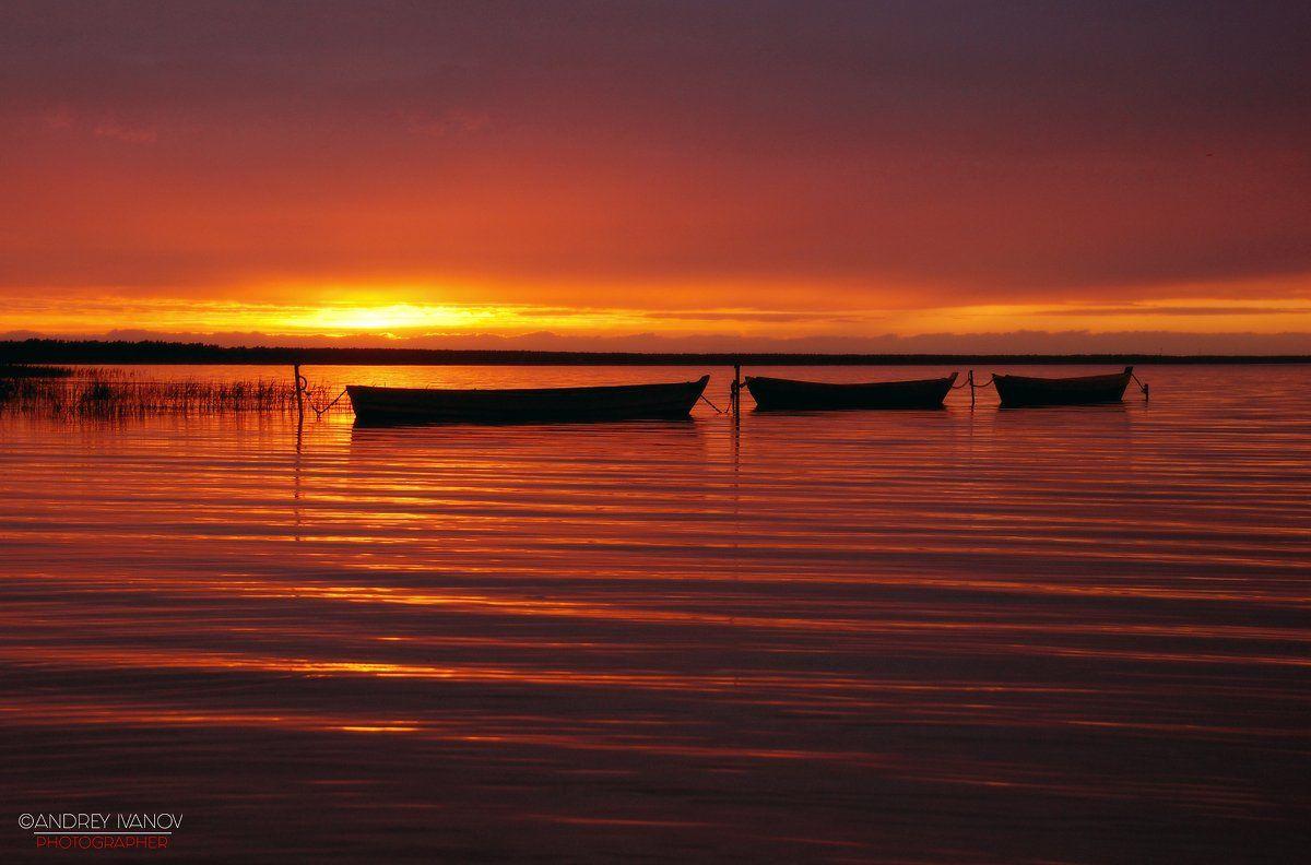 пейзаж, природа, Плещеево озеро, Переславль-Залесский, закат, Андрей Иванов