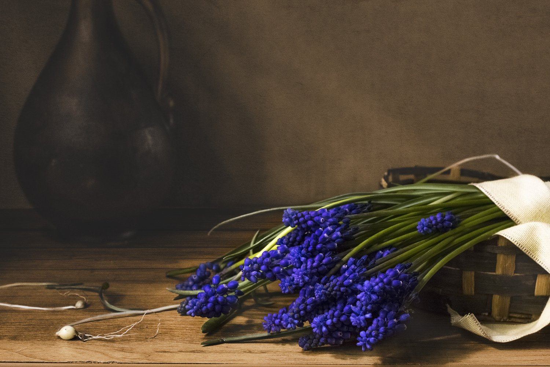 цветы, мускари, корзинка, кувшин, натюрморт, синий, Грицик Инна