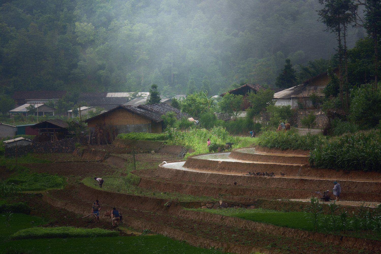 vietnam,, Soft Light