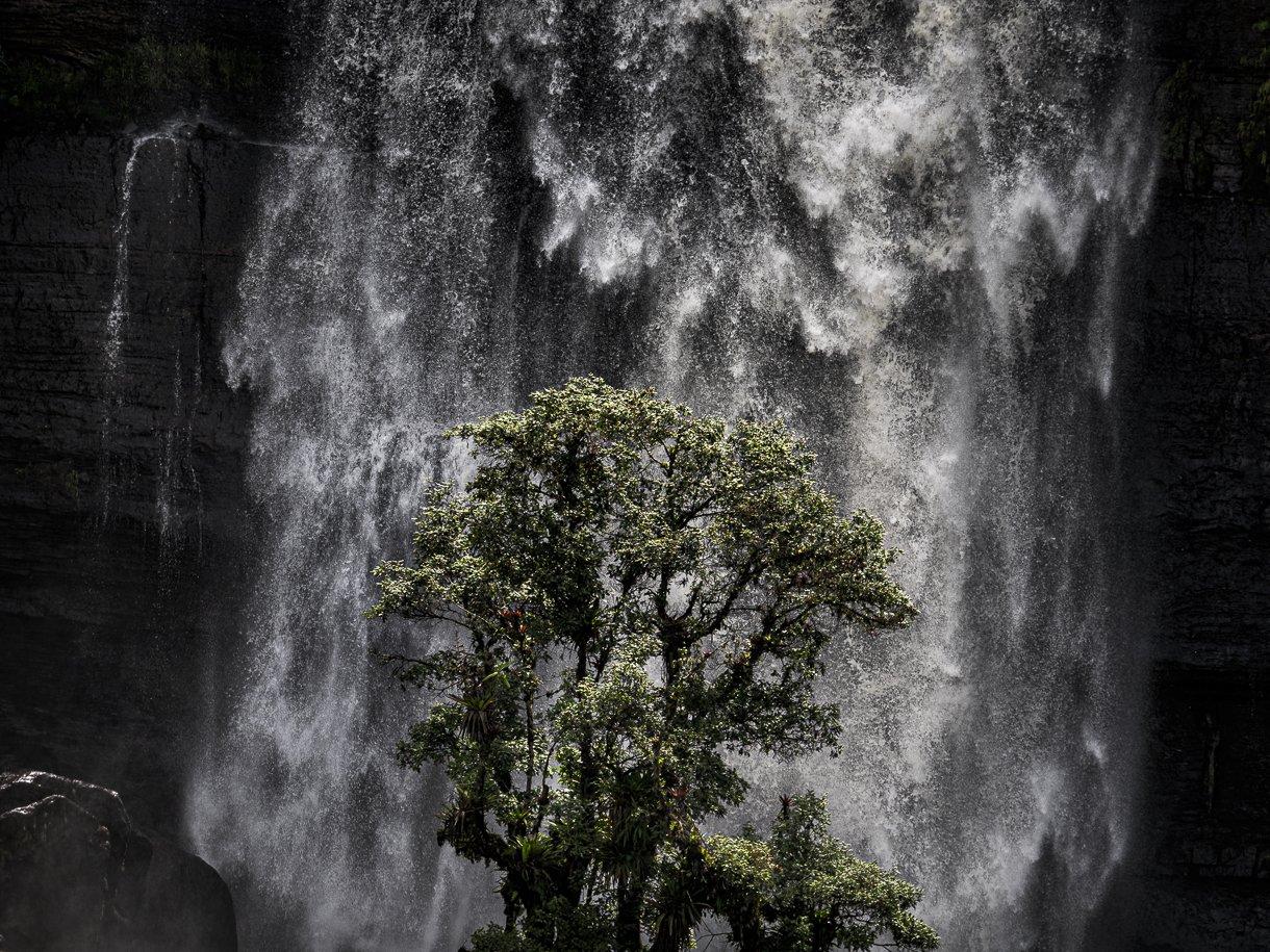 arbol, paisaje, art photography, agua, cascada, paisaje , Molano Kevin