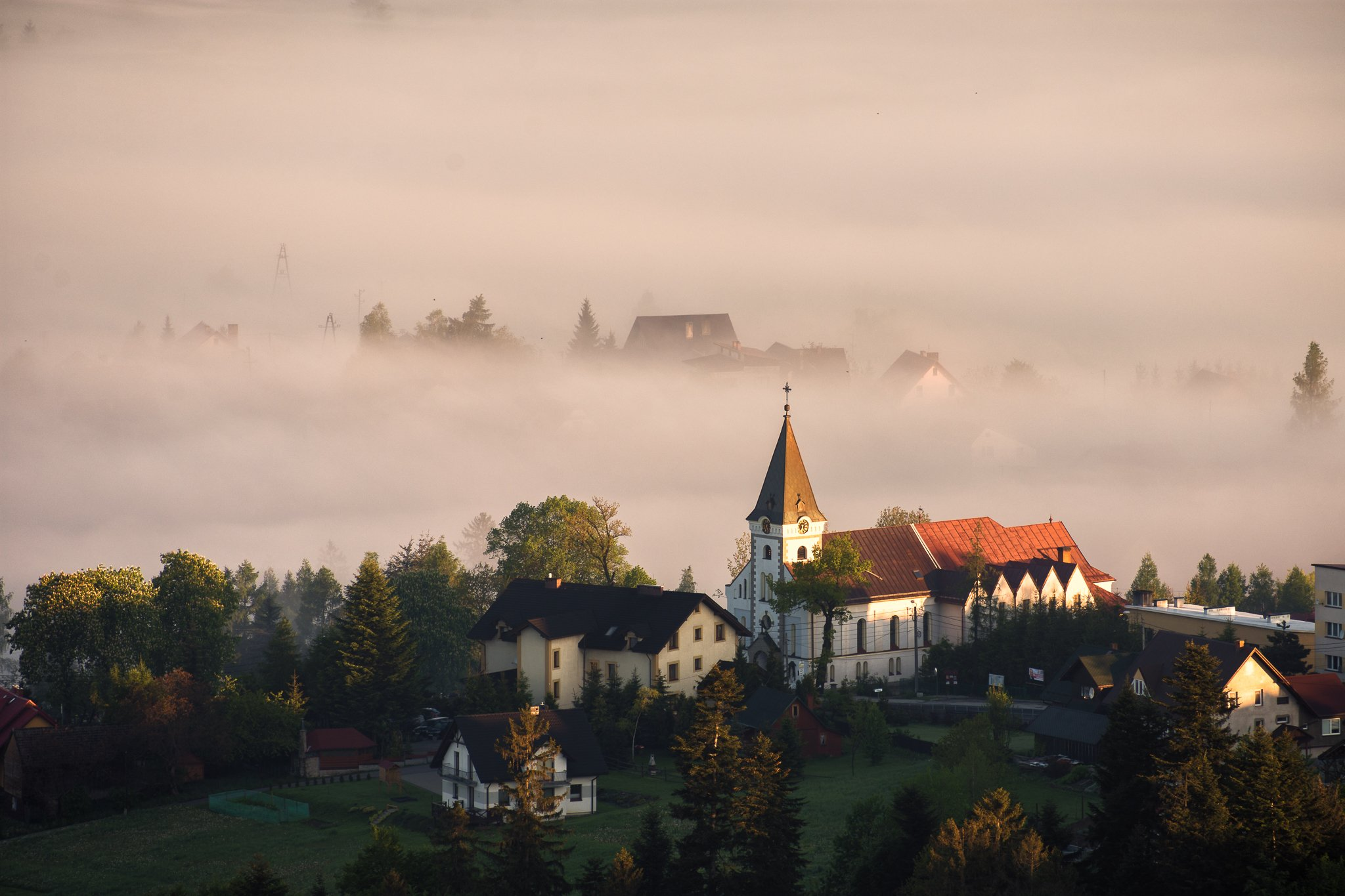 morning,mist,foggy, Marcin Mucharski