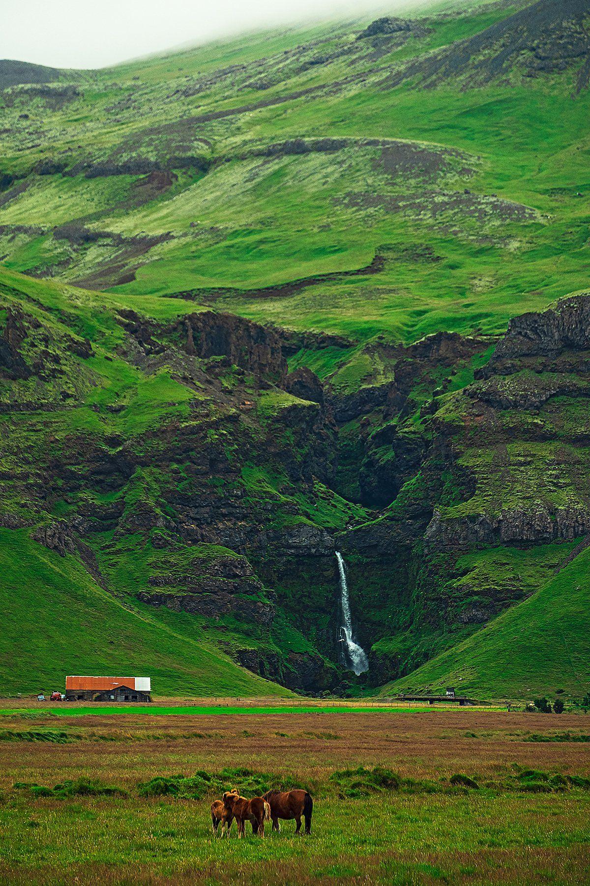 iceland, waterfall, horse, исландия, водопад, лошадь., Владимир В. Эделев