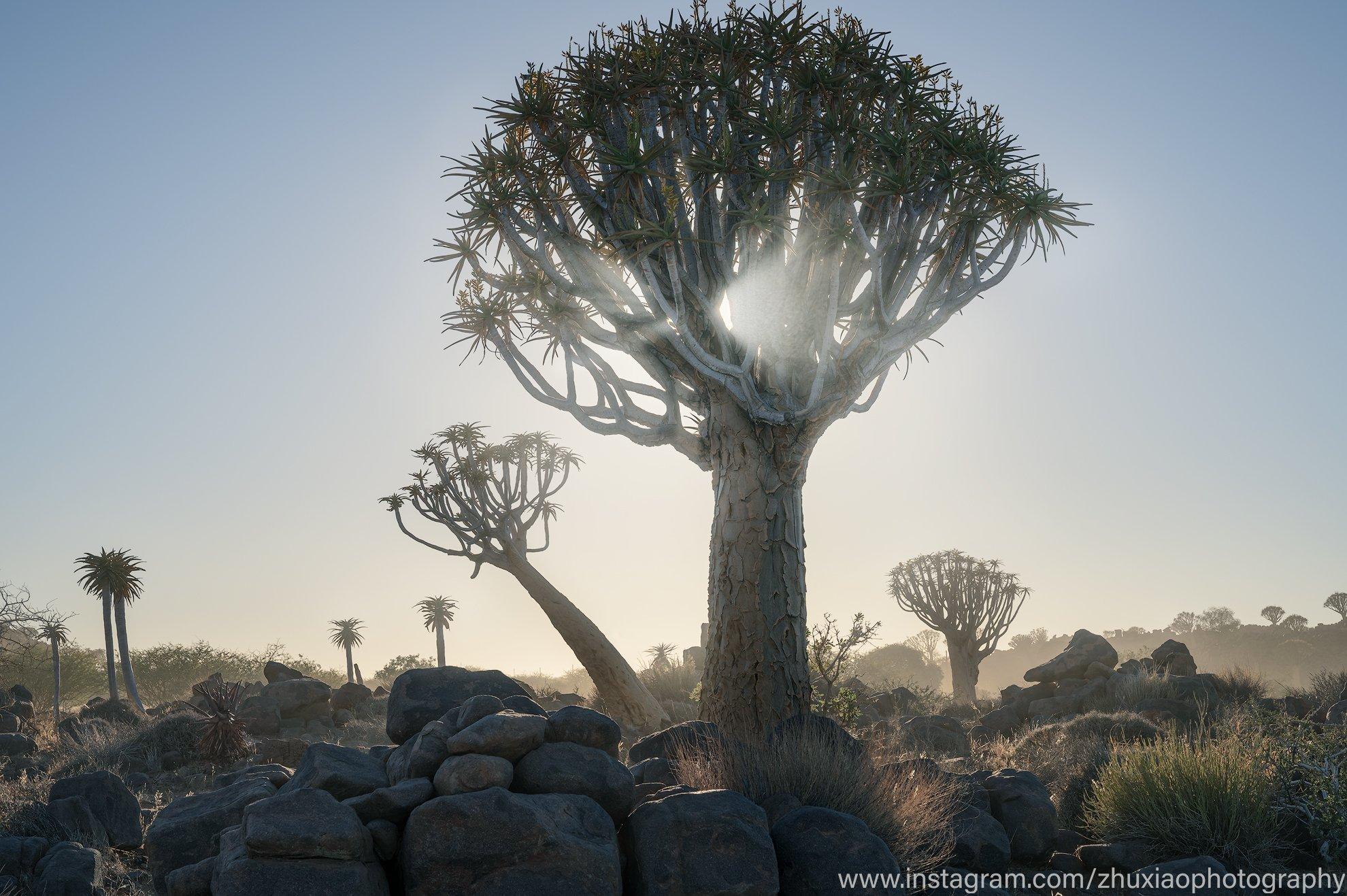 Namibia, Zhu Xiao