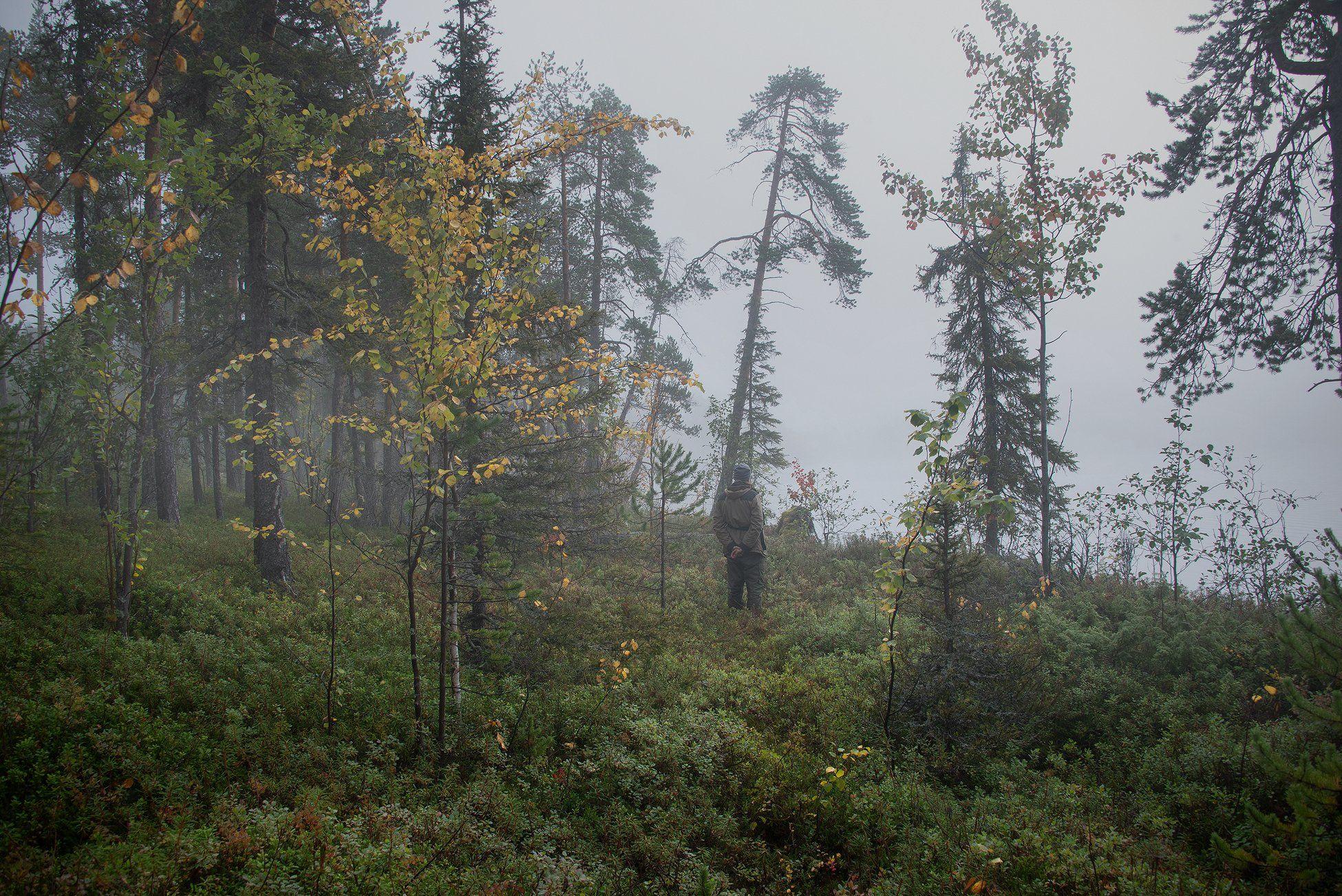 Туман, Север, Кольский, Анастасия Малых