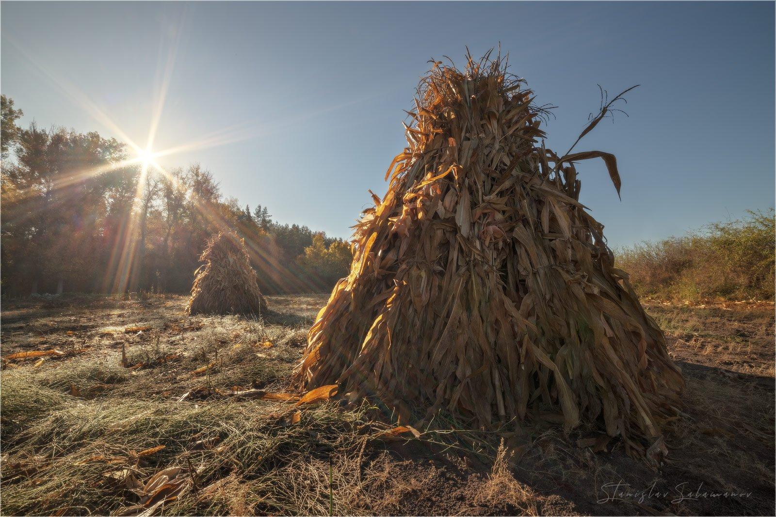 утро, рассвет, туман, осень, осенняя, осенняя пора, пейзаж, солнце, лучи, стог, сено, Станислав Саламанов