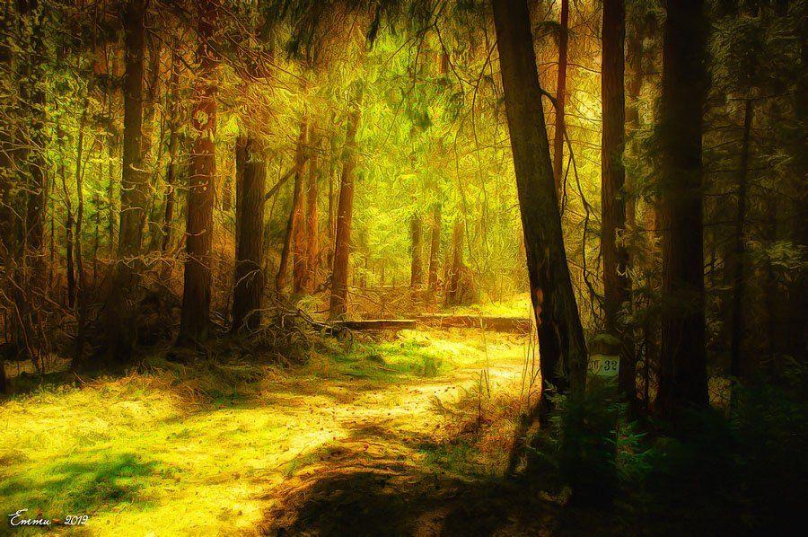 лес, природа, етти