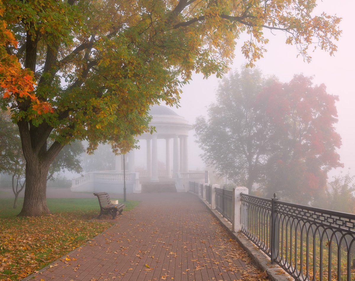 утро туман осень сентябрь, Архипкин Александр
