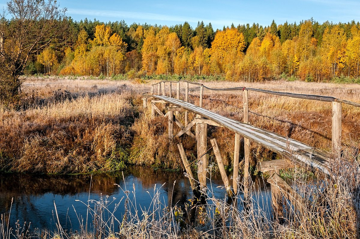 утро, река, морозец, иней, осень, солнце, Yakovlev Artur