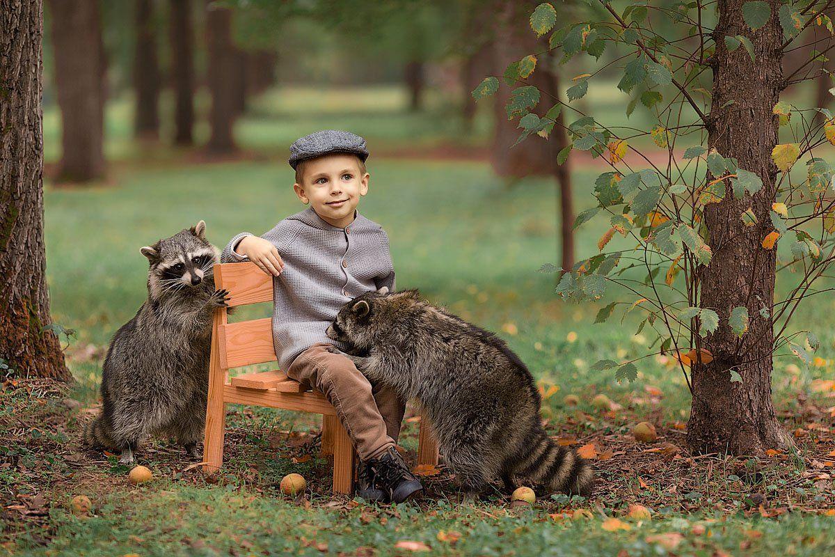 фотограф, зеркальный фотоаппарат canon mark iii, фотопрогулка, мальчик, осень, закат, ребенок, фотосессия с животными, детский фотограф, малыш, енот, енотик, счастье, радость, дети на фото, семейная фотография, любовь, детская фотосессия, восторг, Францева Ольга