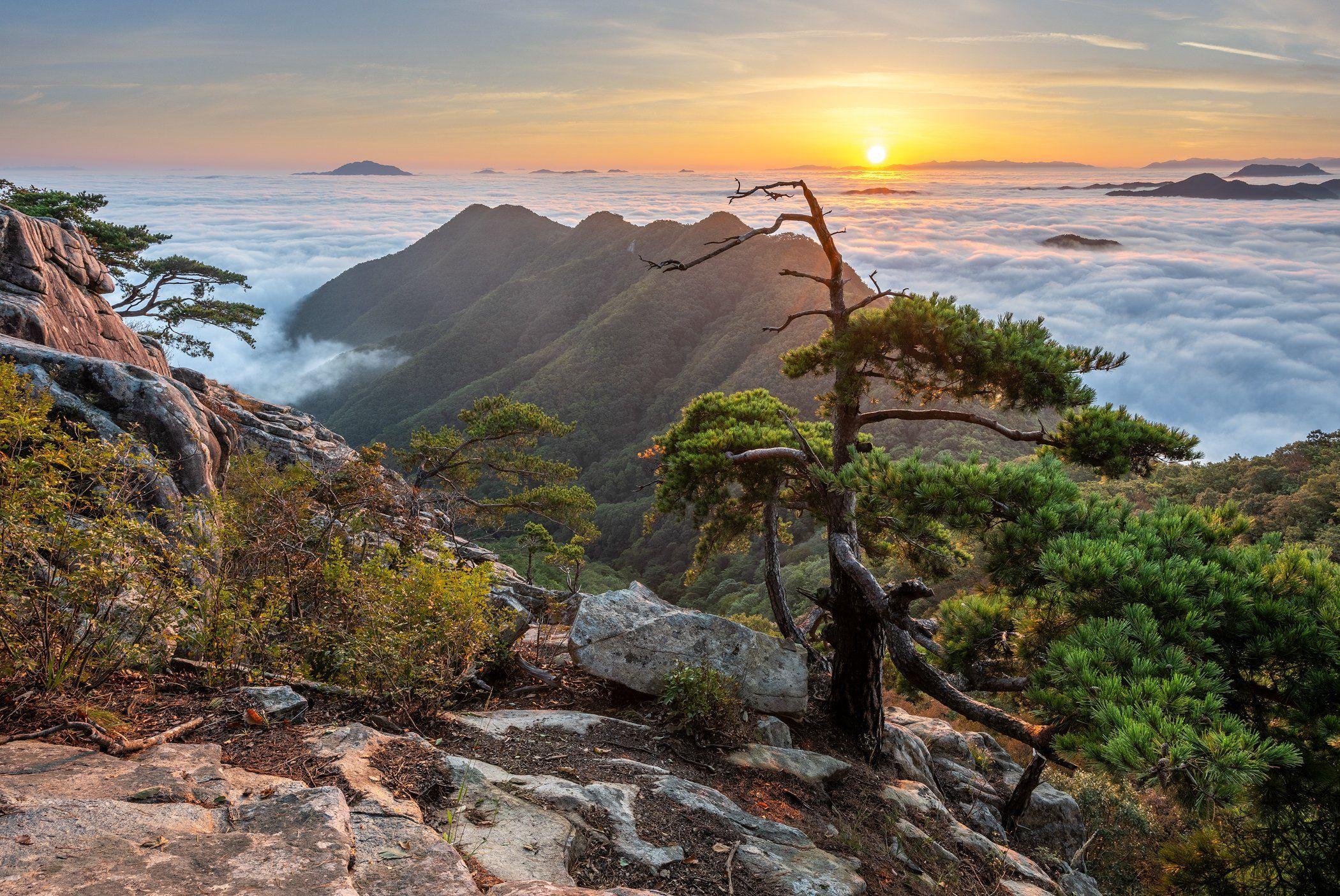 mountains,peak,hiking,fog,clouds,pine,autumn, 류재윤