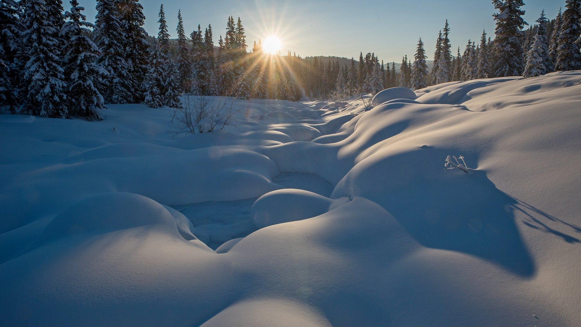ергаки, зима, утро, восход, солнце, сугробы, речка, кедры, тайга, Мальцев Юрий