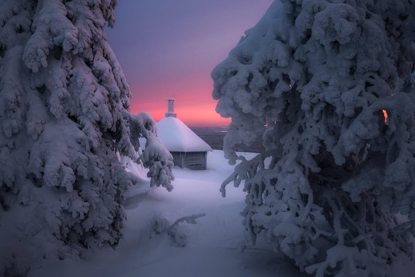 утро, снег, зима, рассвет, финляндия, Cтанислав Малых