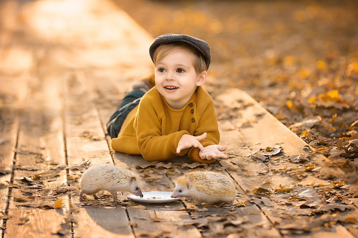 фотограф, зеркальный фотоаппарат canon mark iii, фотопрогулка, осень, малыш, ребенок, мальчик, детская фотосессия, детский фотограф, счастье, радость, дети на фото, детская фотография, любовь, ежики, закат, красота, восторг, Францева Ольга