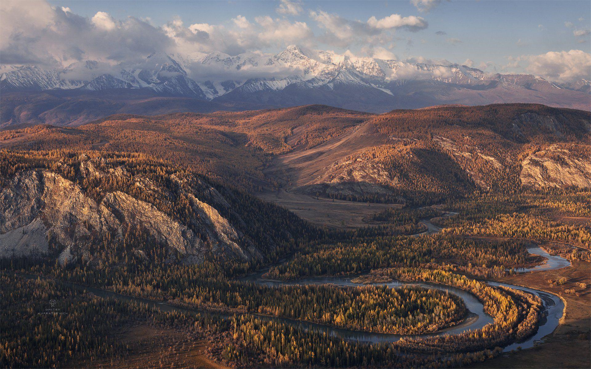 алтай, россия, курай, горы, осень, пейзаж, природа, степь, Купрацевич Дмитрий
