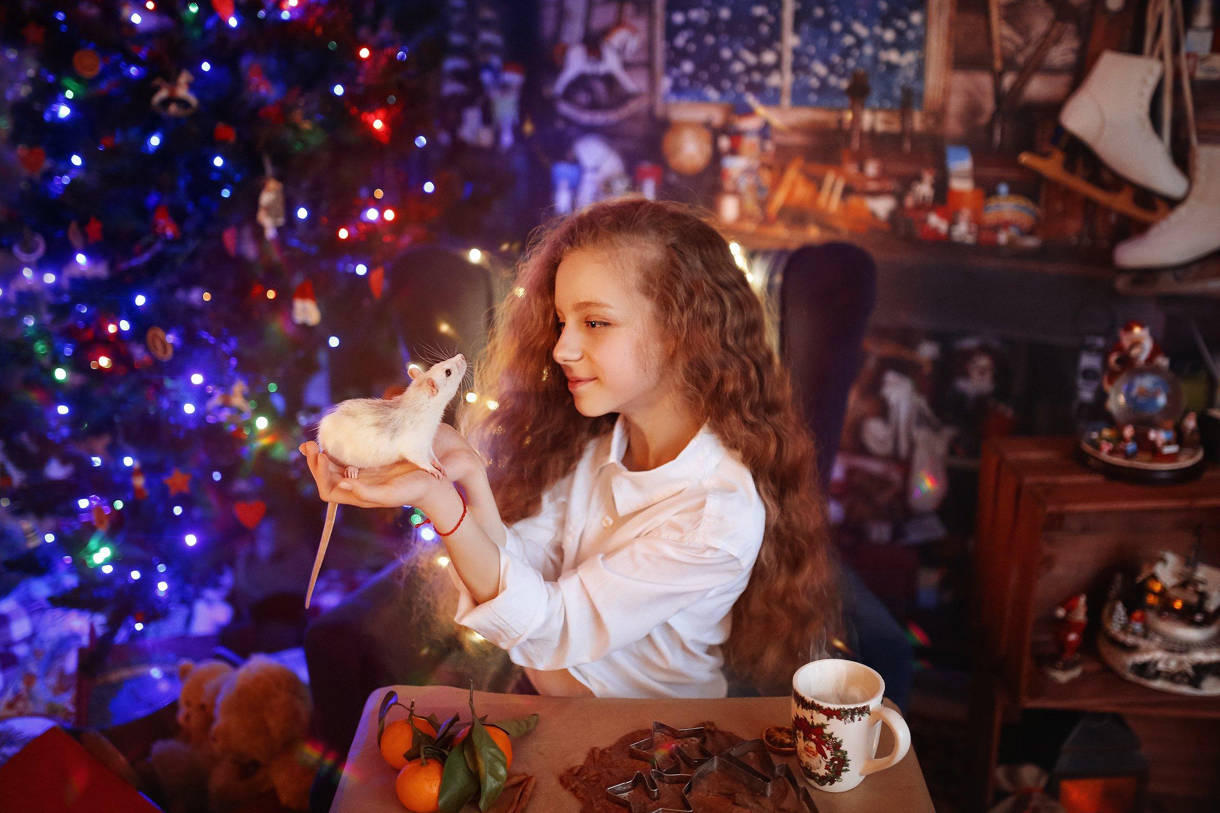 новый год год крысы рождество, Валерия Касперова