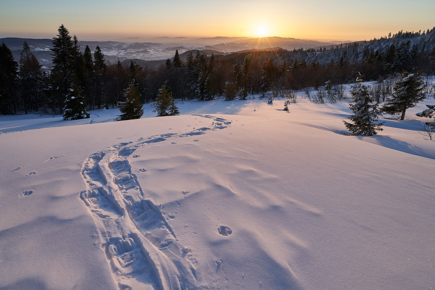 mist,mountains,hut,sunrise,tree,cold,frozen,snow,  Rafal