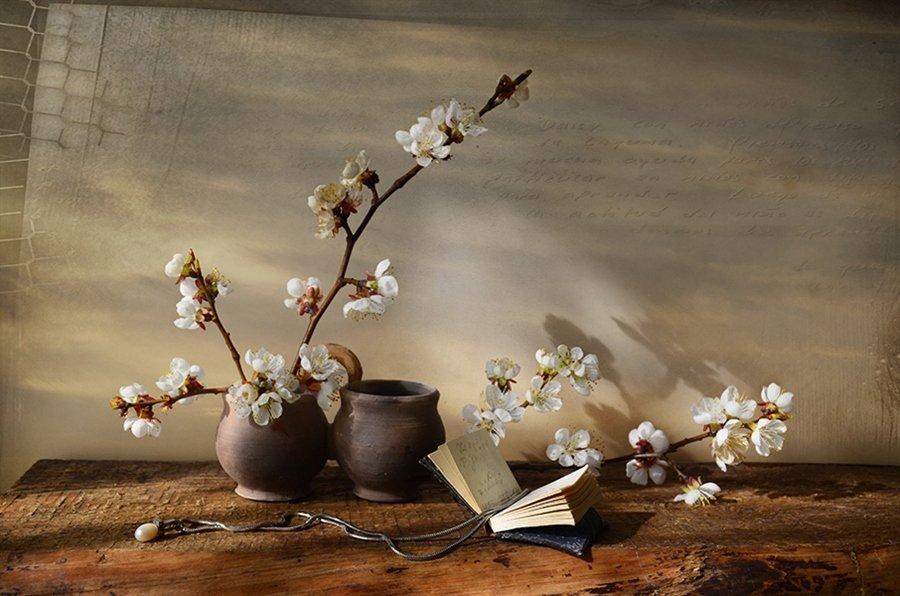 Весна ветви абрикоса натюрморт история , Eлена Шовкопляс