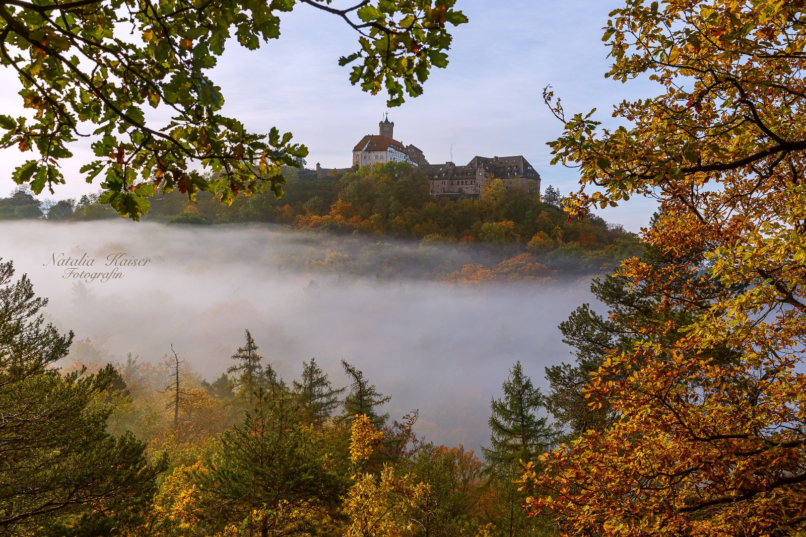 wartburg, deutschland, thüringen, burg, замок, вартбург, Кайзер Наталья