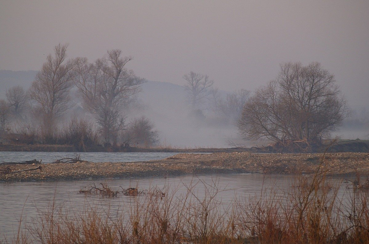 утро, весна, , туман, Jaroslav