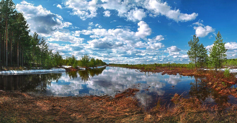 природа, весна, панорама, Алёна Сурнина