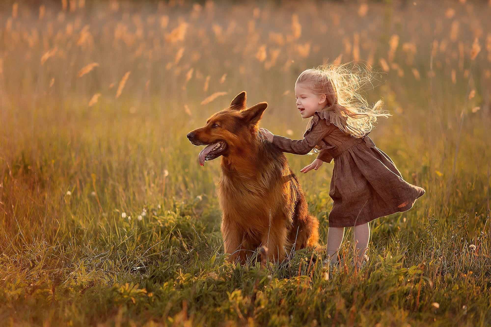 немецкая овчарка девочка ветер закат улыбка радость дружба, Екатерина Белоножкина