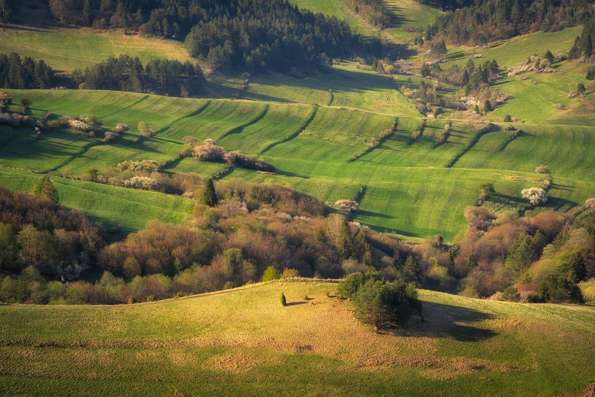 pieniny, nature, landscape, mountains, morning, light, spring, Imiełowski Grzegorz