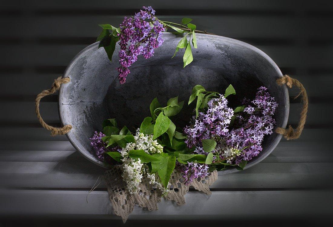 натюрморт, весенние цветы, сирень, Якшина Валентина